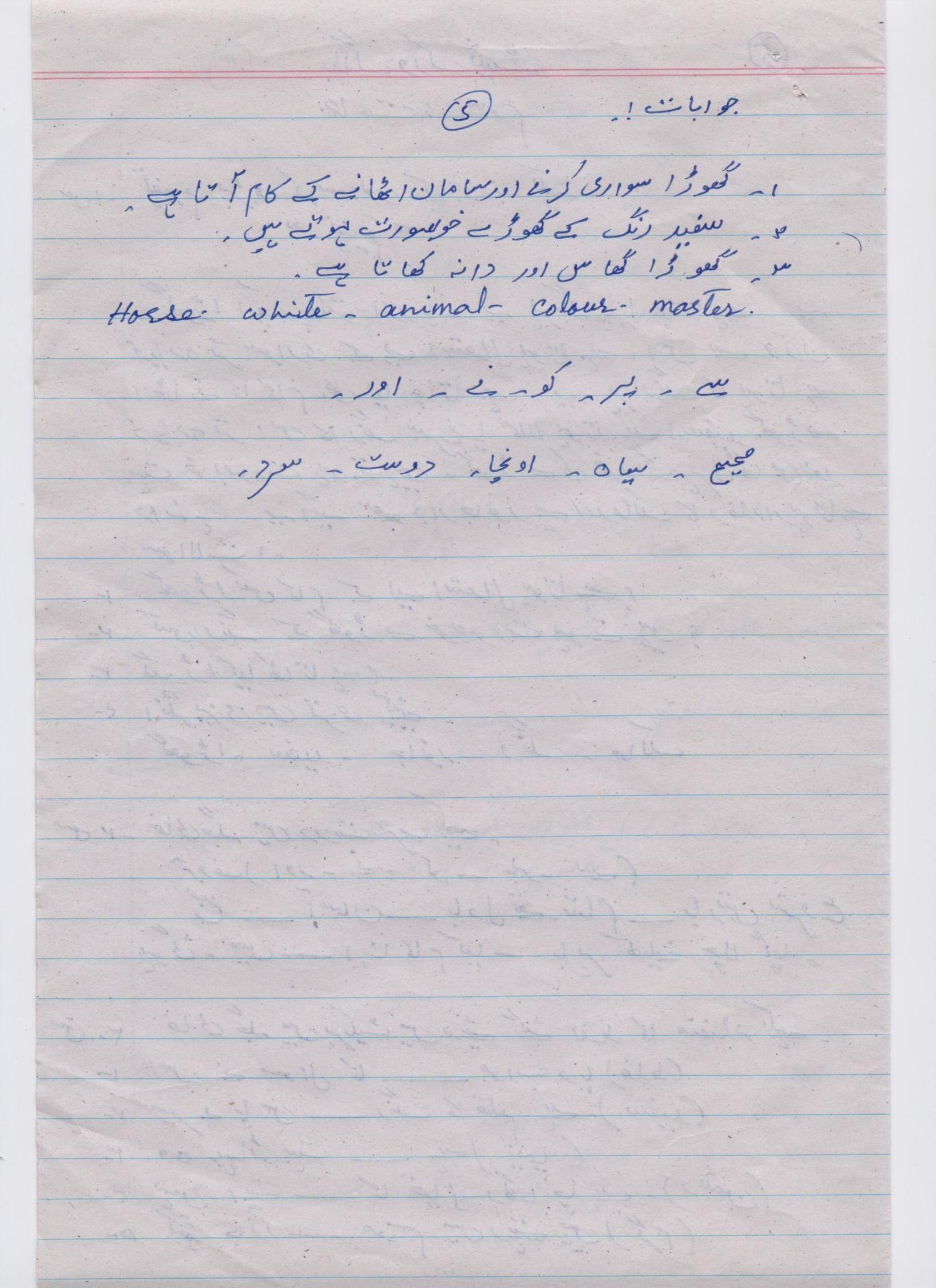 Answer Key Urdu Blog Worksheet Class 3 5