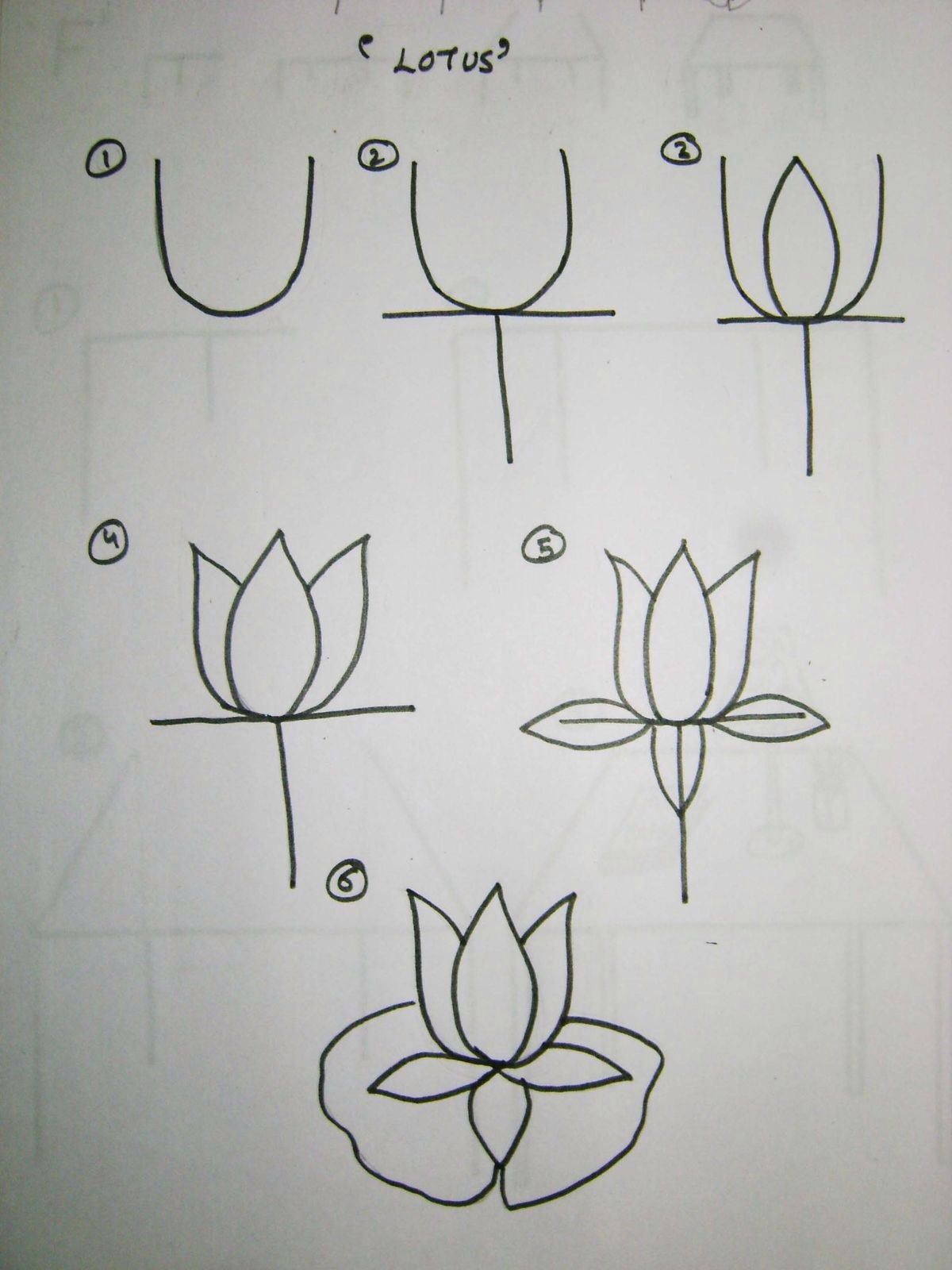 Drawing lotus diy journal pinterest dessin - Comment dessiner un lotus ...