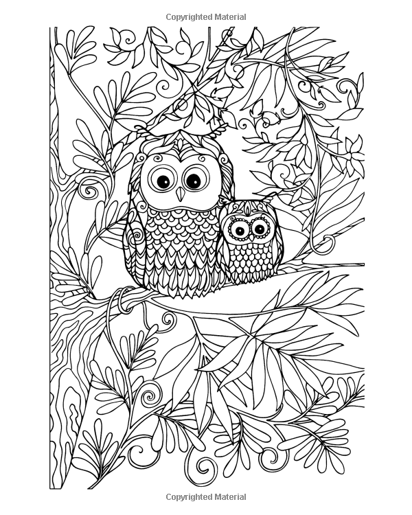 Adult Coloring Book Fantasy Forest Books Volume 2 Two Hoots Best Sellers 9780692588505 Amazon
