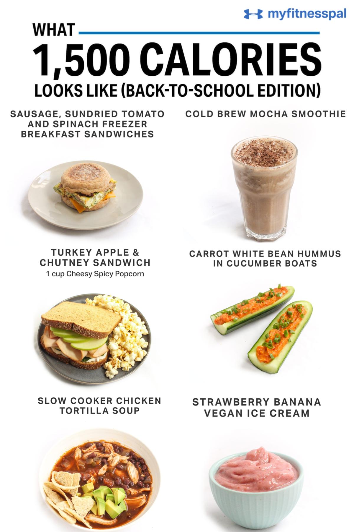 1500 calorie junk food diet