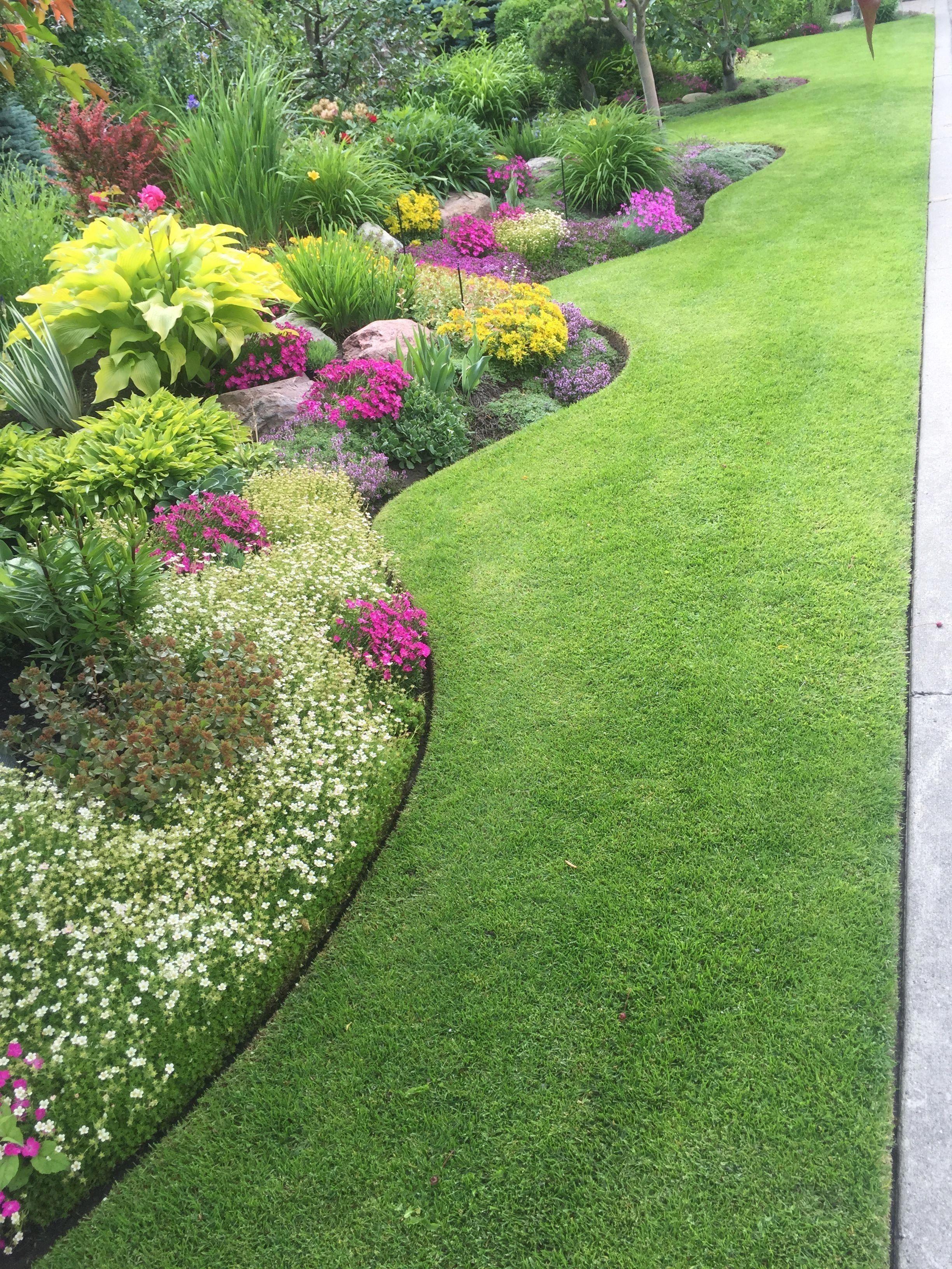 Paisajismo Basico Del Patio Delantero Sandy 1000 In 2020 Garden Design Layout Landscaping Garden Design Small Yard Landscaping