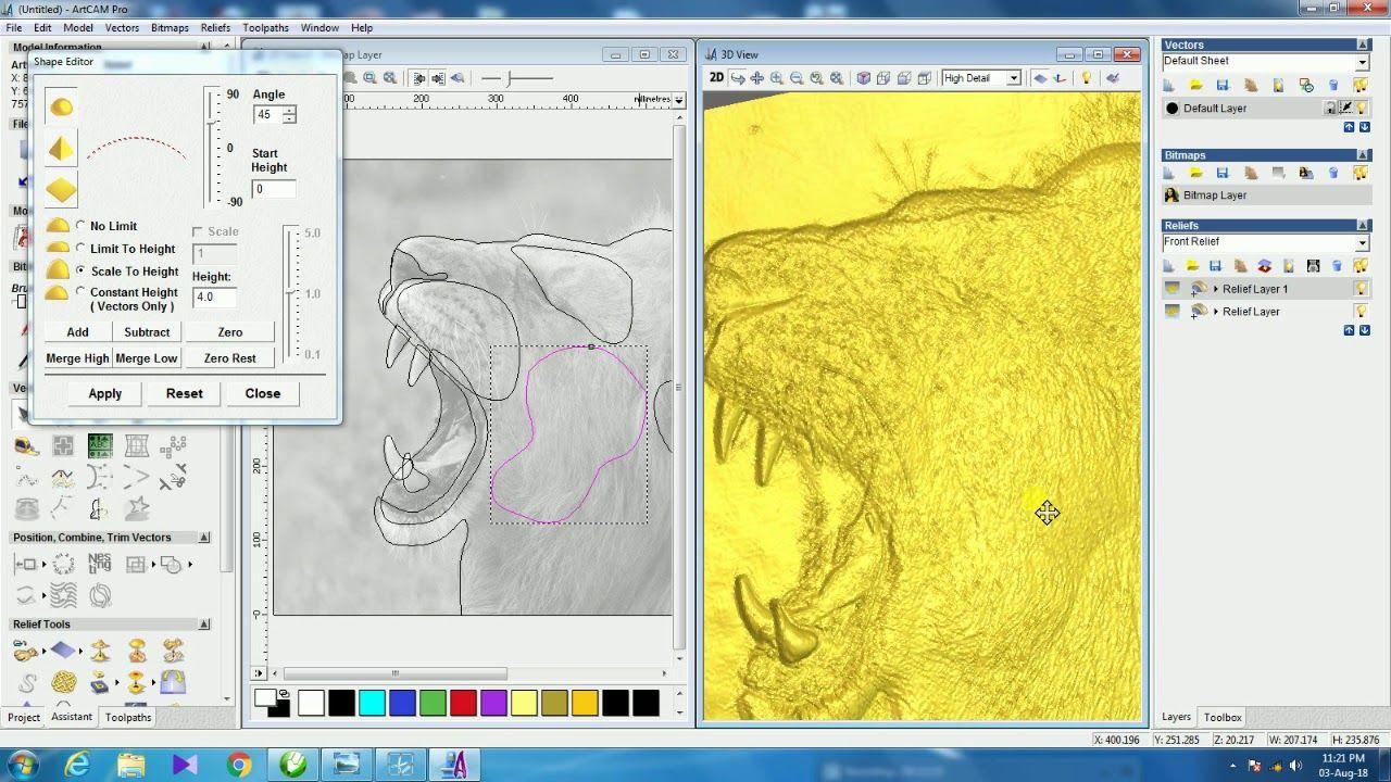3D FACE MAKING IN ARTCAM 2008 (LION SIDE FACE) | Arts crafts