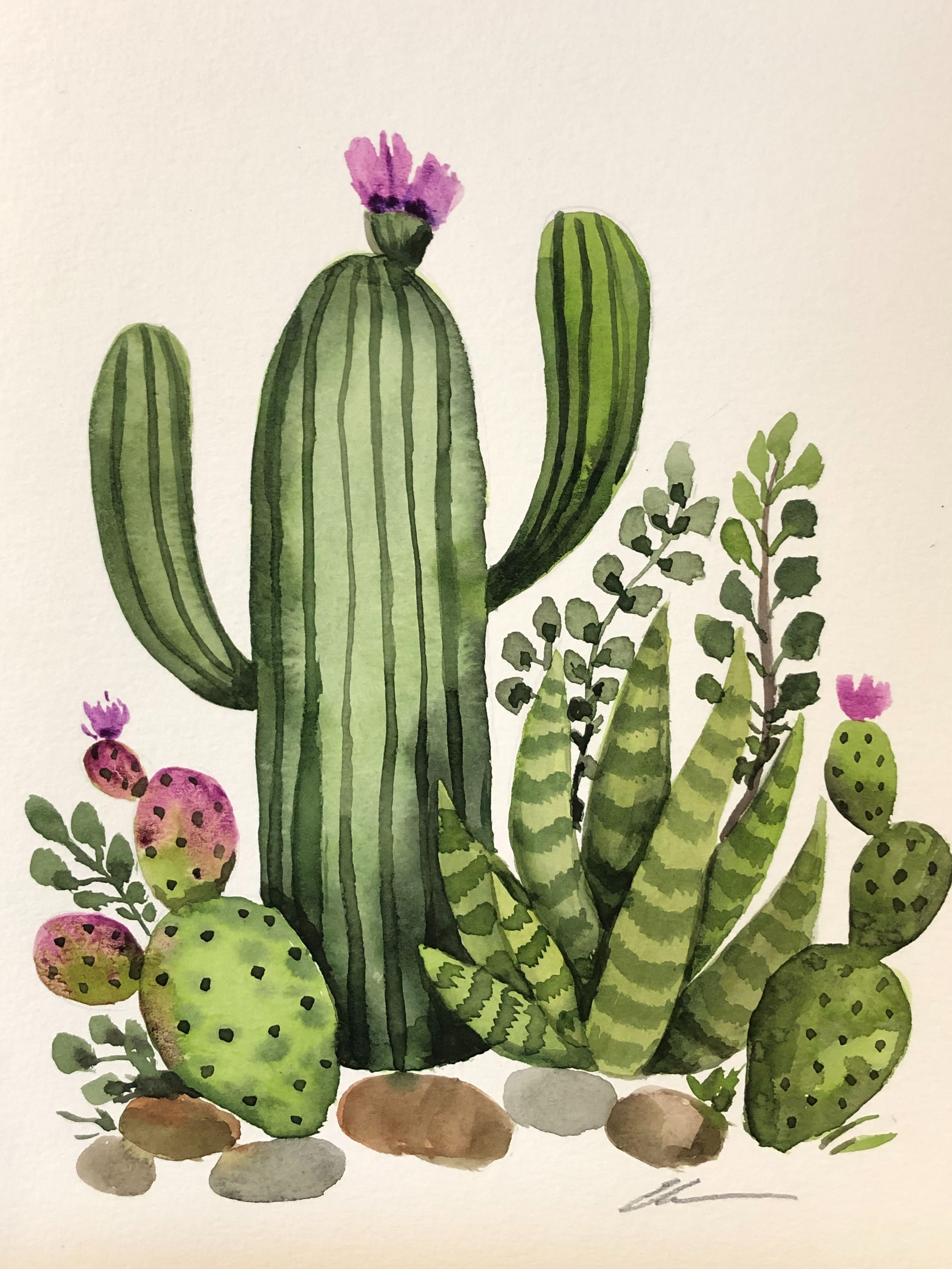 Cactus Garden Original Watercolor Painting Cactus Painting