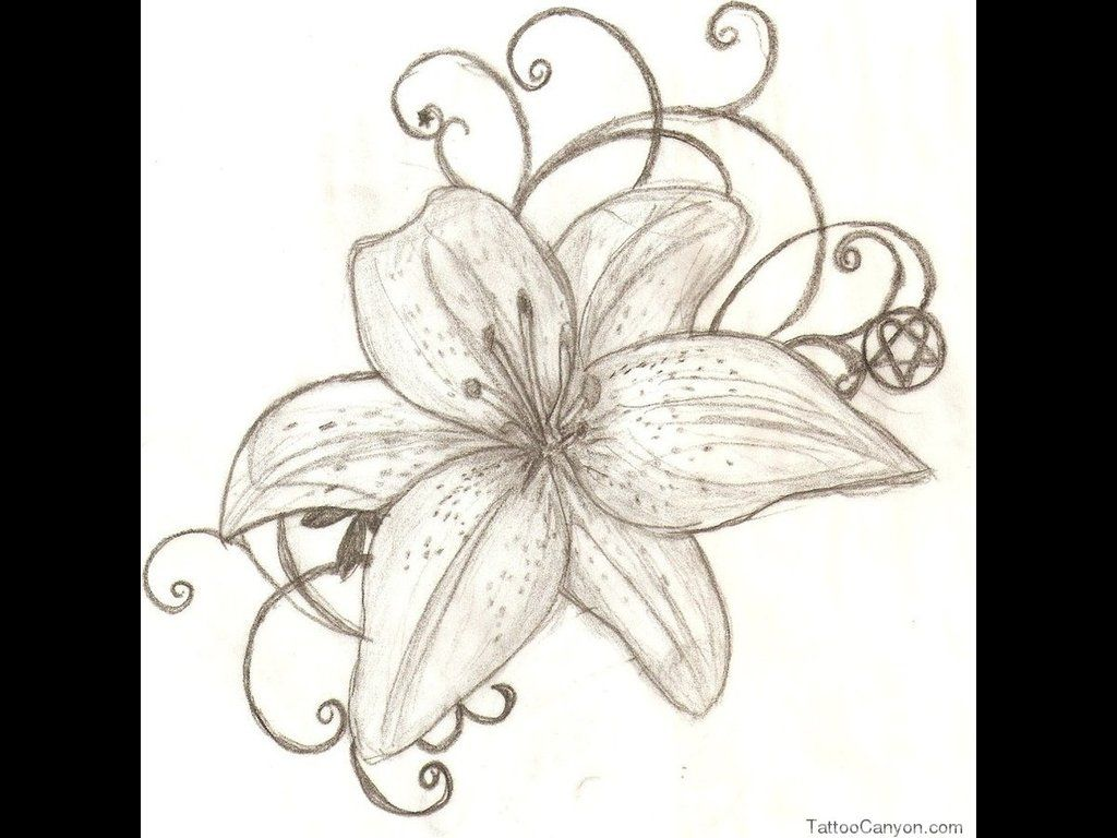 Tiger lily tattoo designs foot galleryhip the hippest tiger lily tattoo designs foot galleryhip the hippest izmirmasajfo Choice Image
