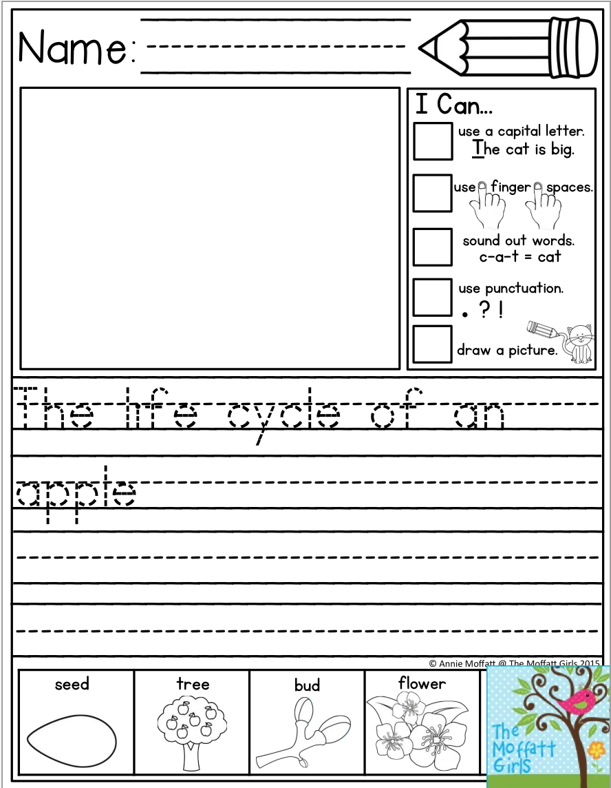 The life cycle of an apple... This packet has 20 journal