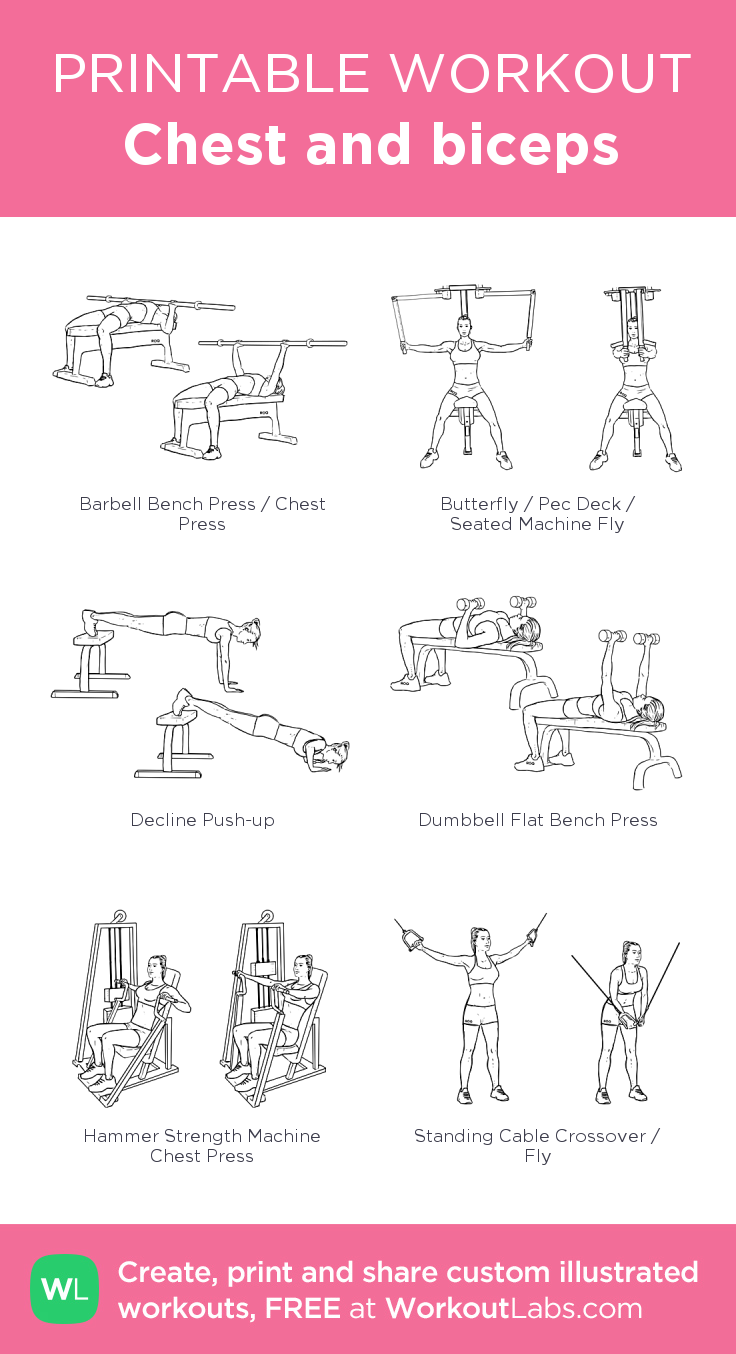 Chest and biceps my visual workout created at WorkoutLabs