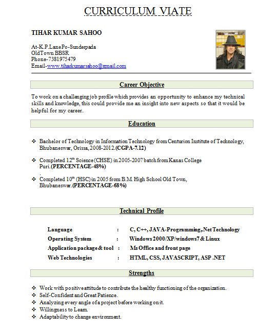 Resume Best Resume Example For Freshers Resume Templates  Best