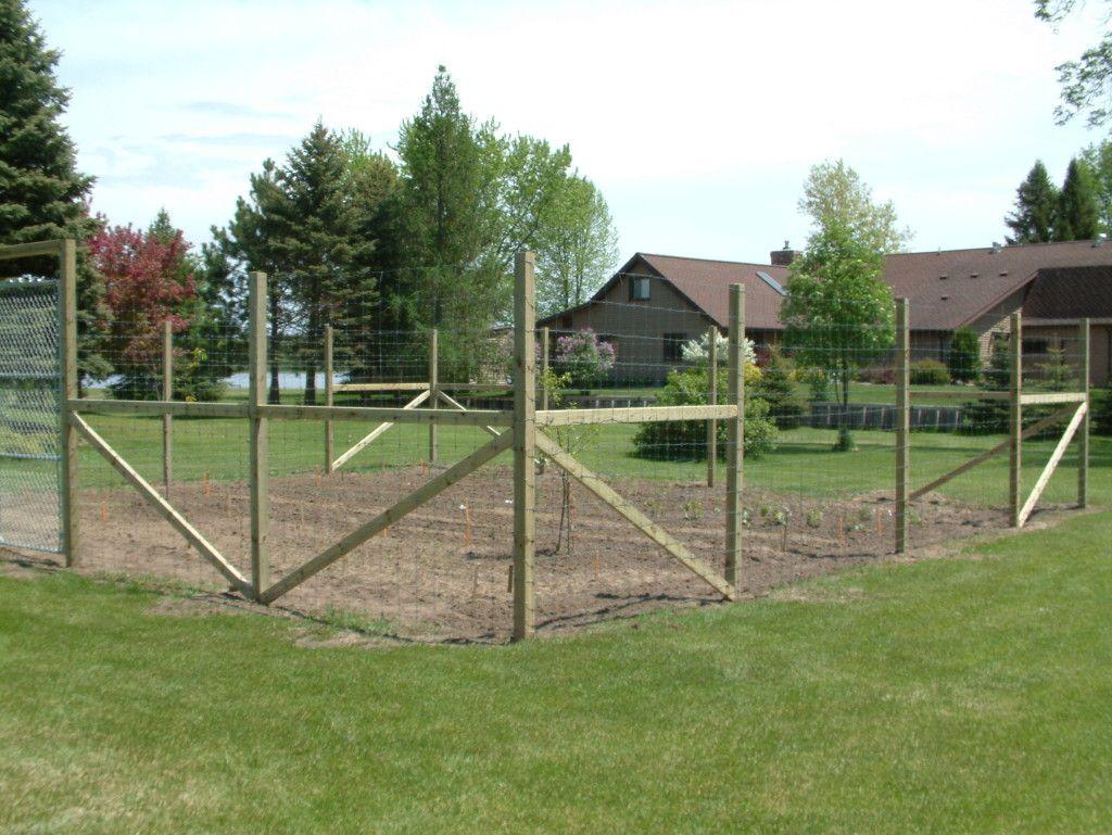 Impressive deer fence for garden 4 deer proof garden fence deer impressive deer fence for garden 4 deer proof garden fence baanklon Image collections