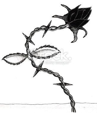 tatouage rose fil barbel noir fil de fer stock illustration barbel pinterest. Black Bedroom Furniture Sets. Home Design Ideas