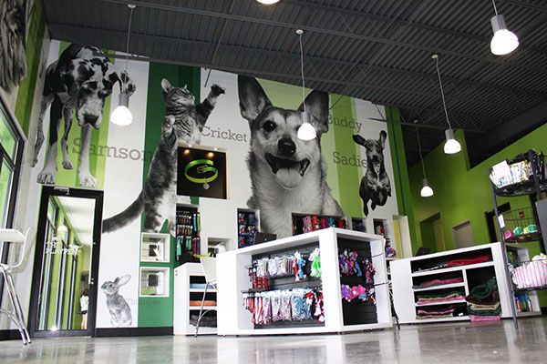 Environmental Graphics Greenville Humane Society (With