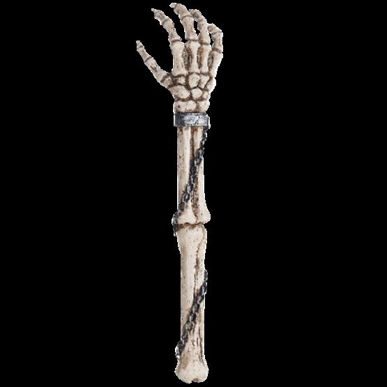 Image Title Skeleton Arm Skeleton Arms