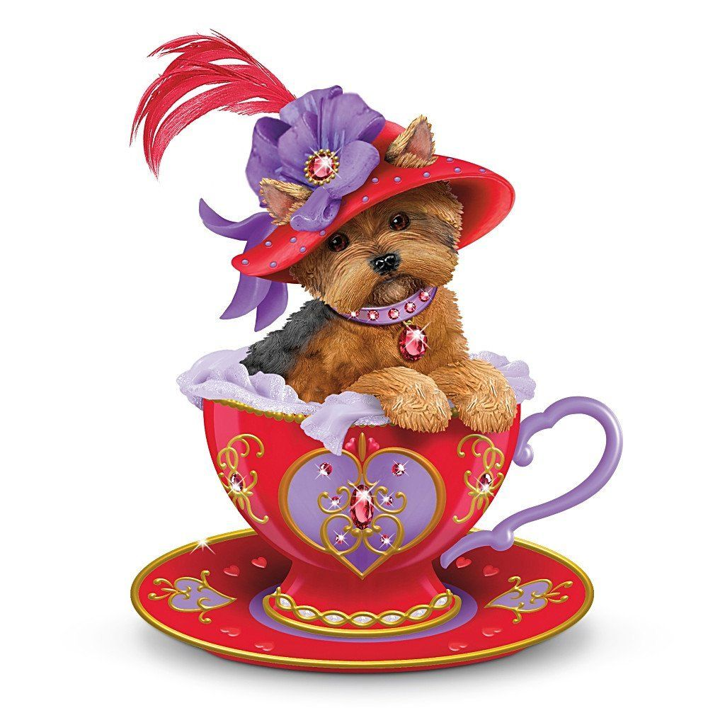 For this weeks product, we found an adorable Yorkie Teacup