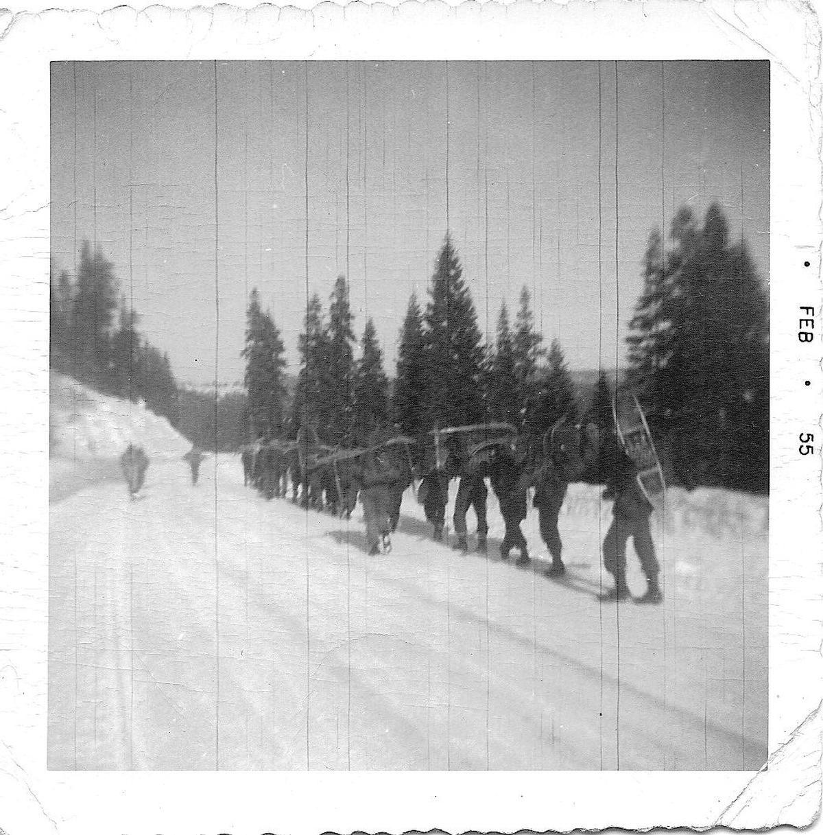 Combat Survival Training, Stead AFB, 195455. Strategic