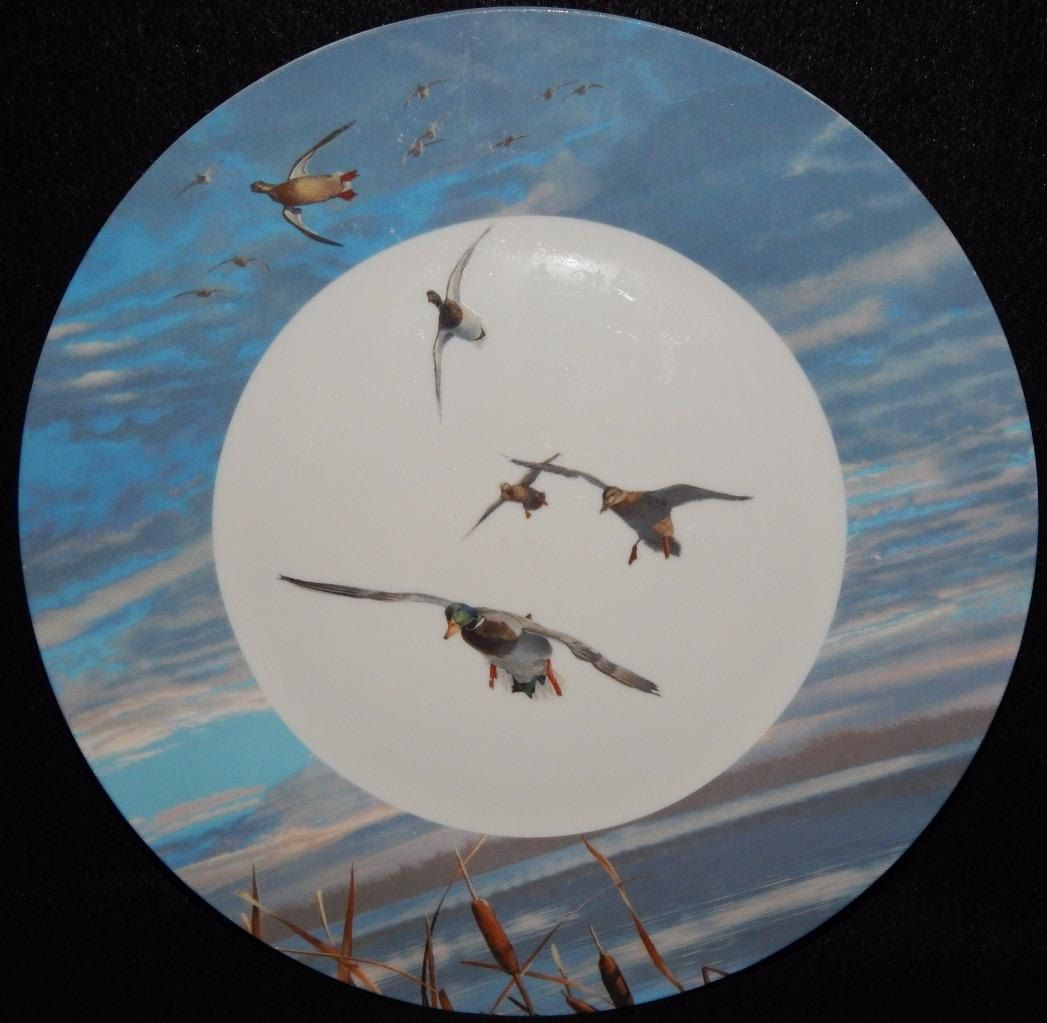 Ducks Unlimited Dinner Plate Dinnerware Light Blue Rim with Birds ...