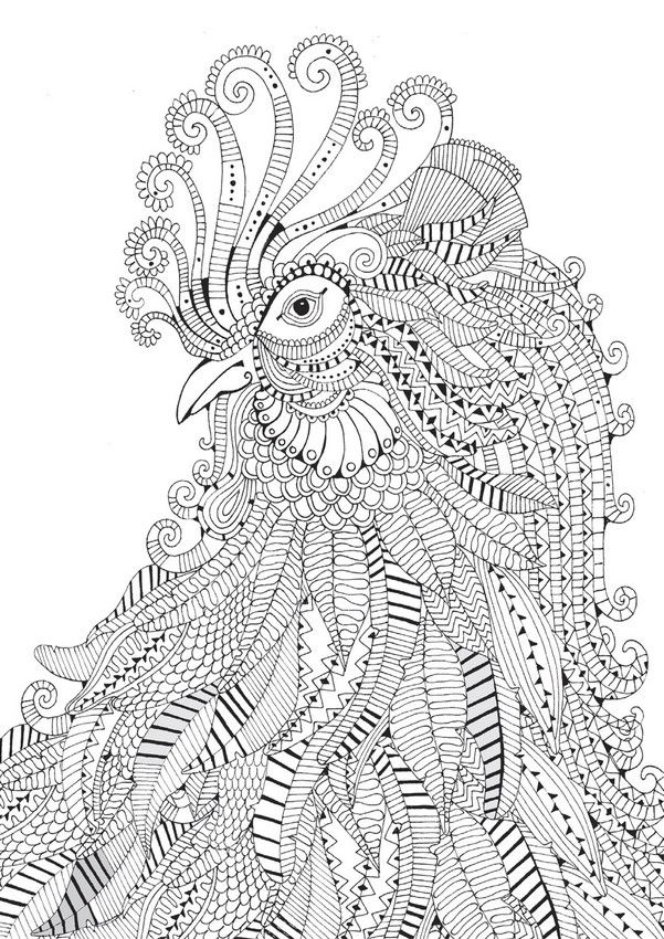 rooster abstract doodle zentangle zendoodle paisley coloring pages colouring adult detailed advanced printable kleuren voor volwassenen