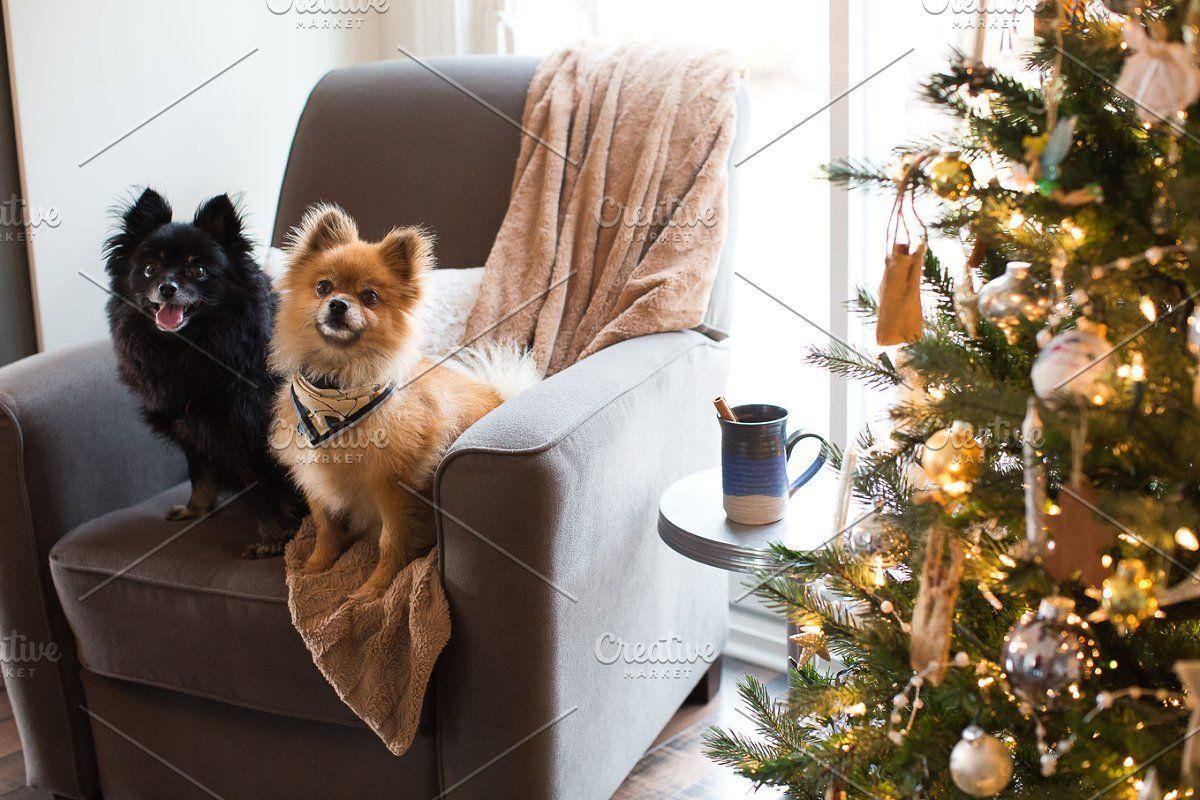 Photo of Vektor Weihnachtsgeschenkanhänger # gesponsert, # gesponsert, # Geschenk # Weihnachten # Tags # Geschenke
