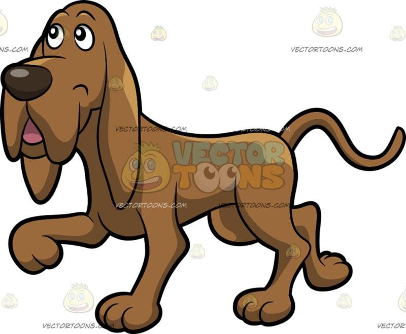 a happy go lucky hound dog hound dog and dog rh pinterest com free hound dog clipart