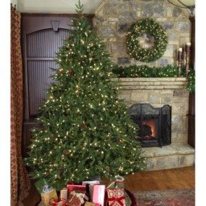 Get Ready For The Holidays With Christmas Tree Lights Etc