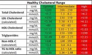 High Cholesterol Numbers Chart Men Bing Images