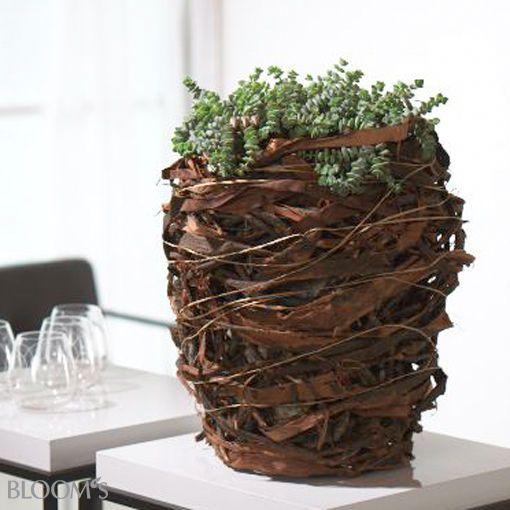 bloom 39 s bloom 39 s deko ideen mit blumen und pflanzen beautiful table decorations blumen. Black Bedroom Furniture Sets. Home Design Ideas