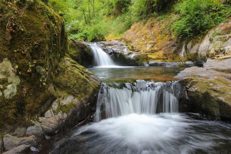 Sweet creek hike Hiking in Portland, Oregon and