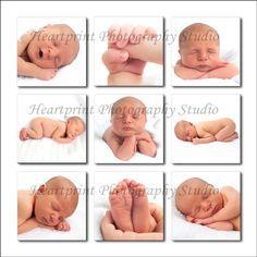 Professional Newborn Pictures - Bing Images