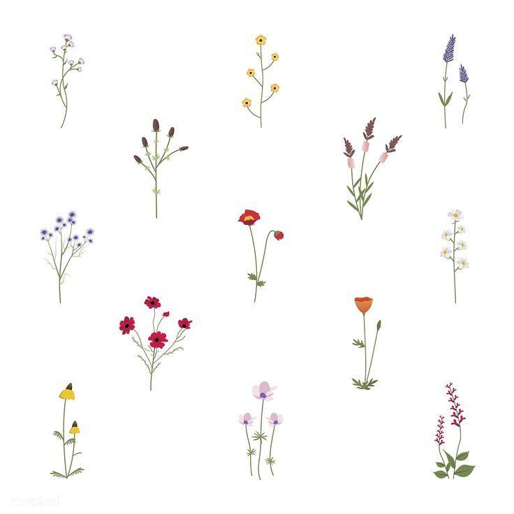 200 Fotos de tatuagens femininas no braço para se inspirar – Fotos e Tatuagens #flowertattoos #wildflowers