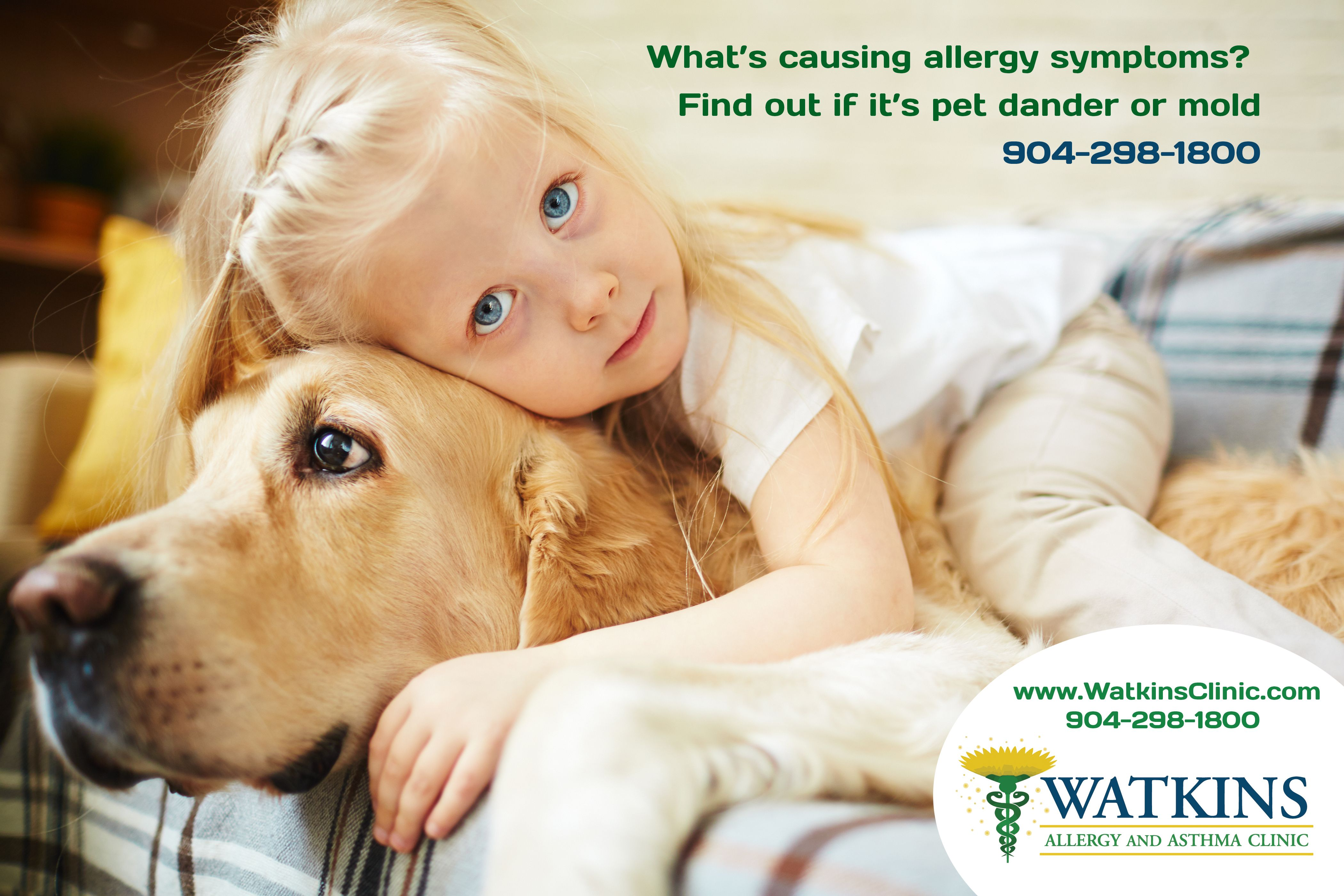 It May Be Difficult To Determine The Cause Of Symptoms In Children Allergies And Asthma Are Serious Health Issues Yet Many Remai Hayvan Evcil Hayvanlar Cocuk