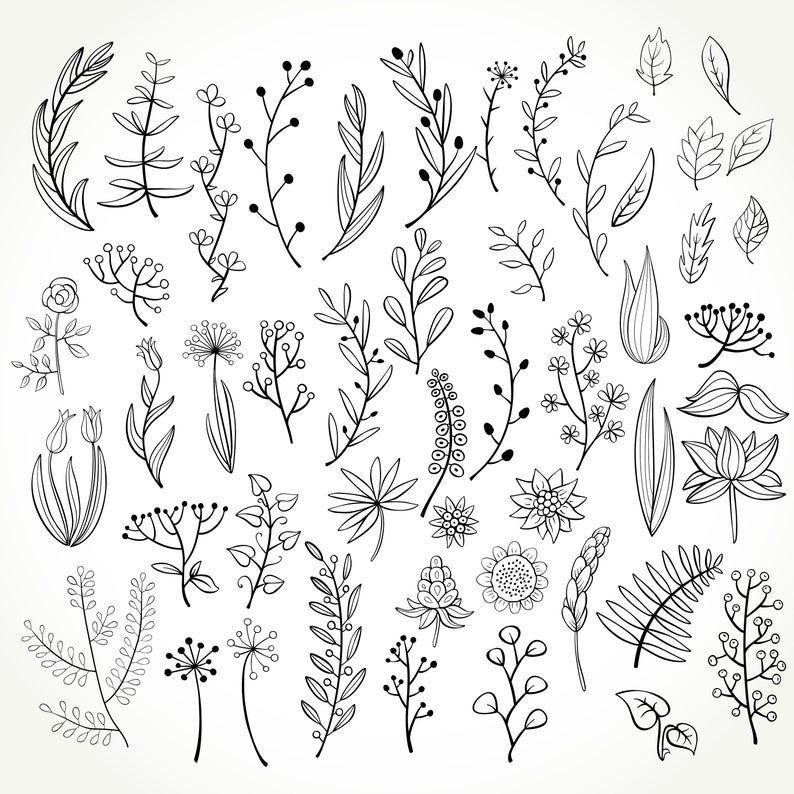 Set Of 50 Doodle Botanical Elements Png Doodle Floral Clipart Svg Doodle Floral Hand Drawn Botanical Clipart Botanical Doodle Set In 2021 Floral Drawing Flower Doodles Flower Drawing