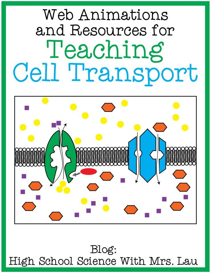 Teaching Cell Transport: Osmosis, Diffusion, Facilitated ...