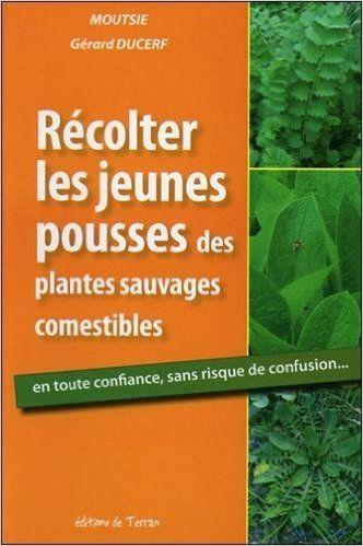 R colter les jeunes pousses des plantes - Cuisine plantes sauvages comestibles ...