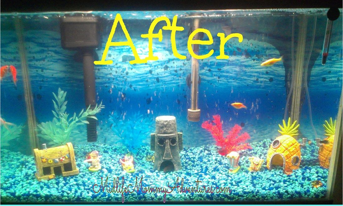 Fun spongebob aquarium remodel stuff for the kiddos for Fun fish tank