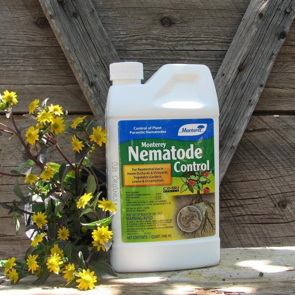 Nematode control in the home garden