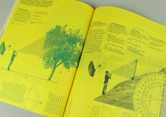 InformForm #2: pictorial design systems