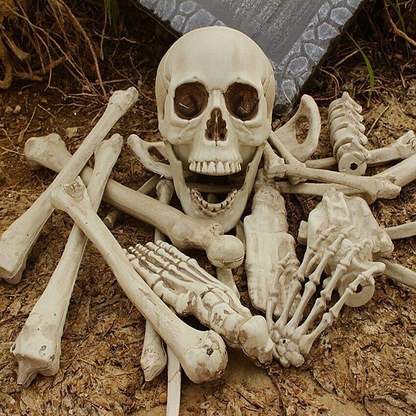 Human Bones Skull Plastic Skeleton Toys Gag Prank Party Scaring Haunted House Ebay In 2020 Halloween Party Props Haunted House Decorations Halloween Skeleton Decorations