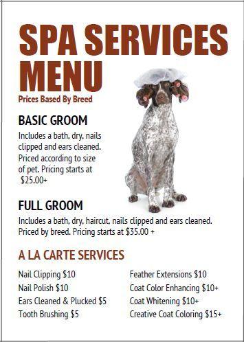 Pin By Laralea Brown On Groom Room Dog Grooming Business Dog