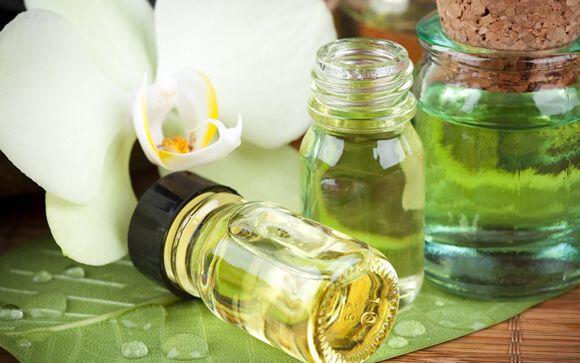 Cinco beneficios del aceite de Neem