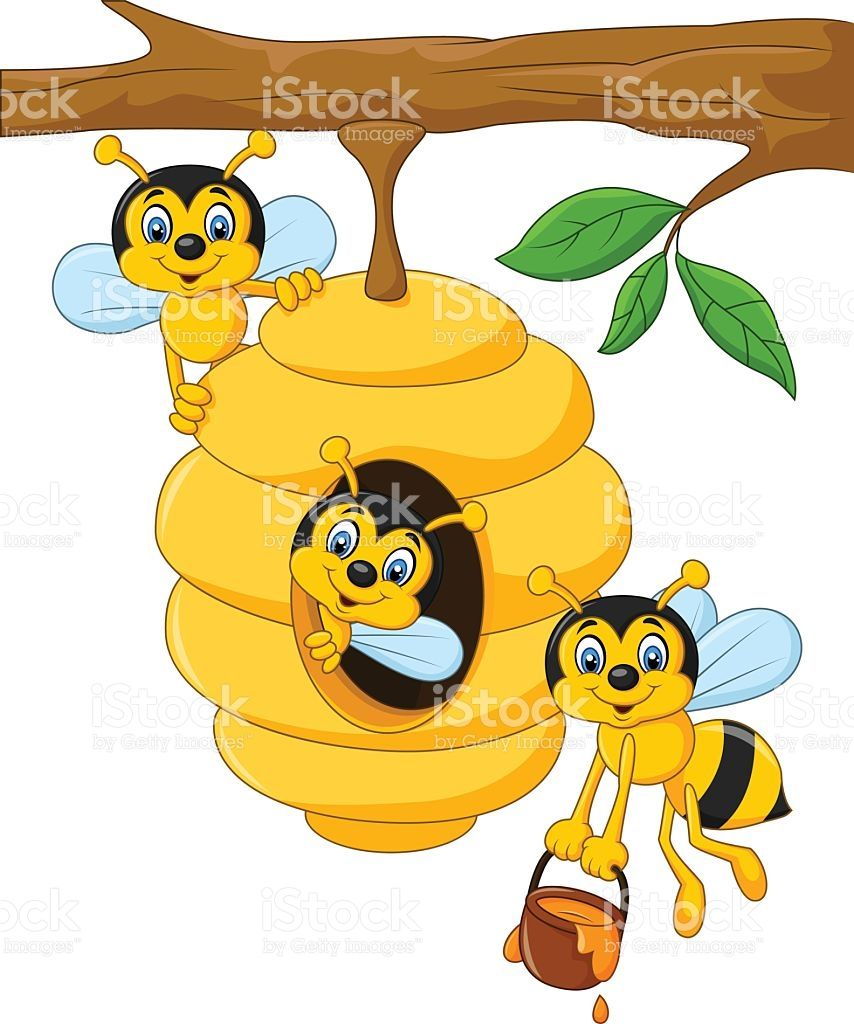 Illustration of Cartoon branch of a tree with a beehive and a bee ...