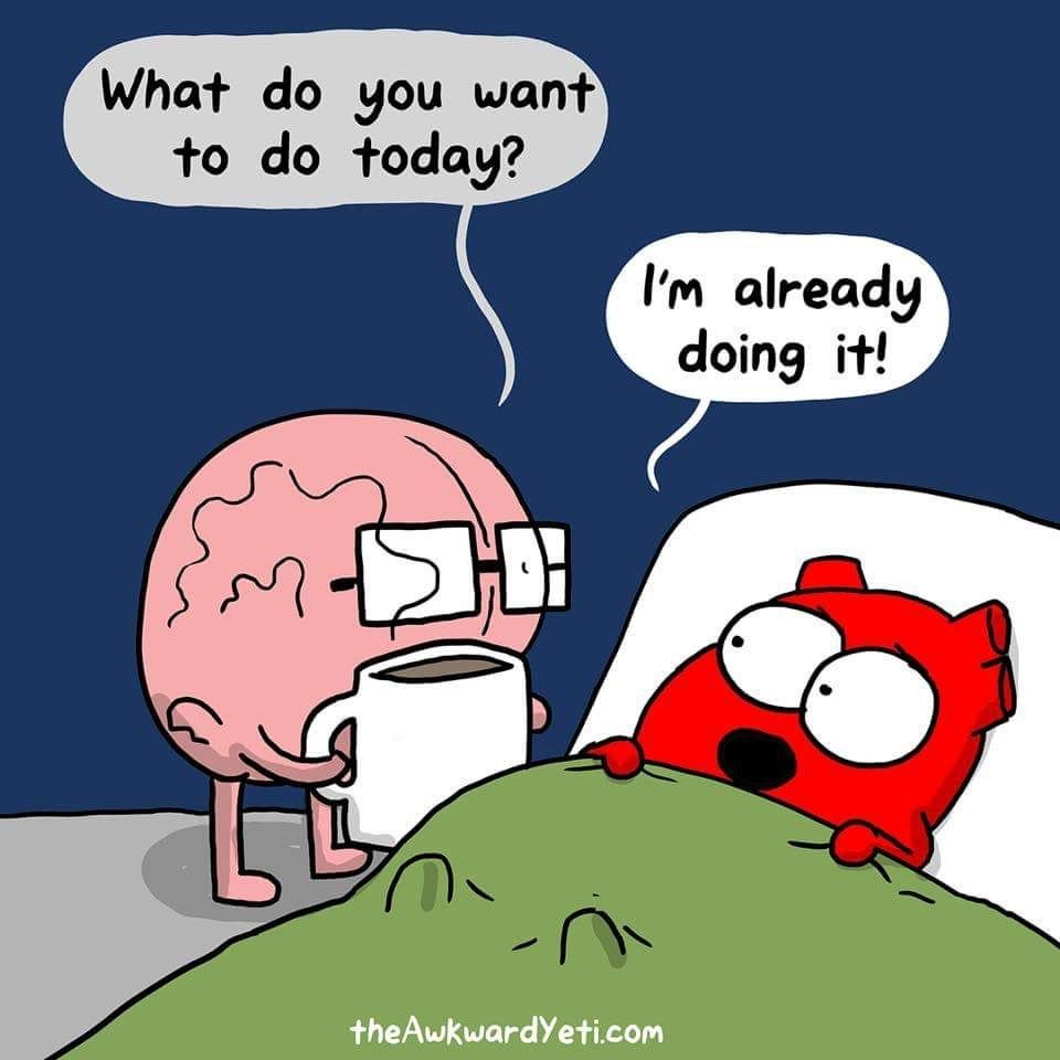 20 Memes To Inject Your Day With Some Merriment Awkward Yeti Heart And Brain Comic Funny Comics