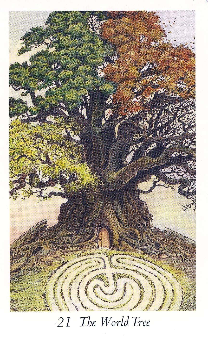 The World Tree Wildwood Tarot Tarot Zvierata Priroda Drevo