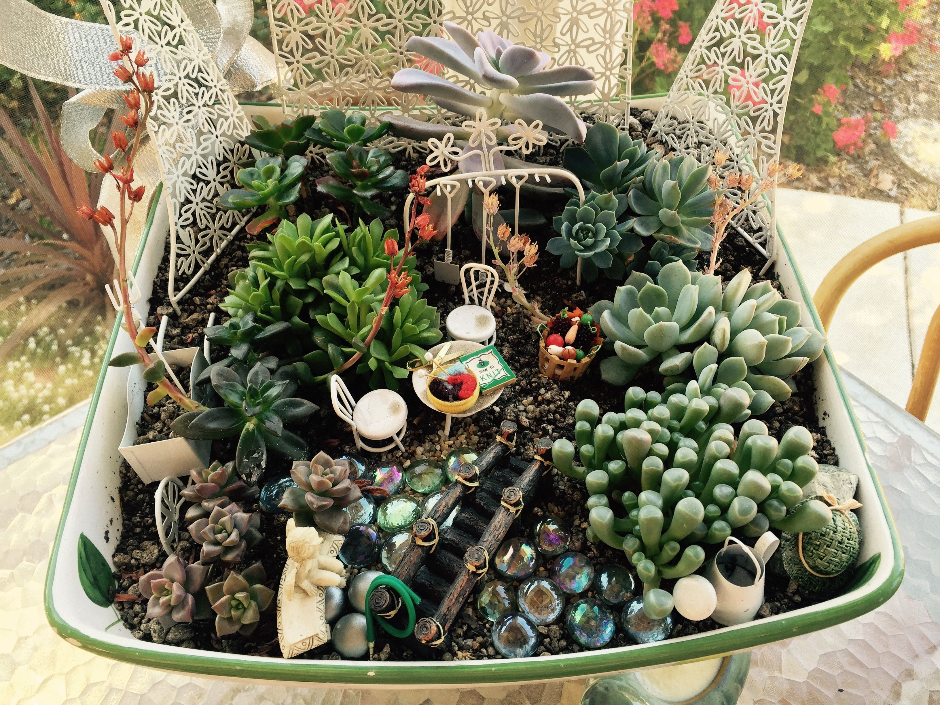 Fairy Garden Ideas Hens And Chicks | Terrarium | Pinterest | Garden Ideas,  Fairy And Gardens