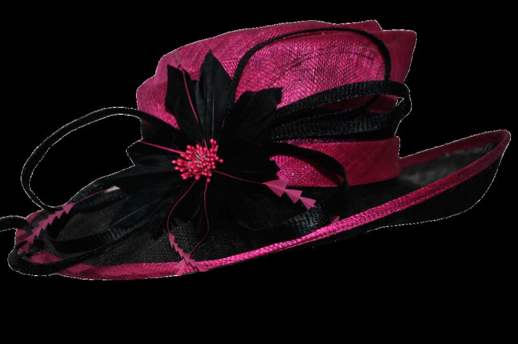 Fancy Pink Hat By Doloresmd D72vmzt Png 1024 680