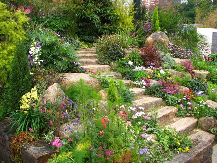 jardin de rocaille en pente à plusieurs plantes vivaces à fleurs