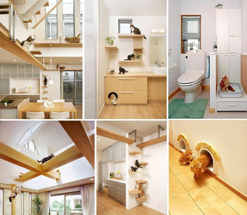 20 Creative Indoor Cat Playground Ideas Home Design Lover Cat Playground Cat Houses Indoor House Design