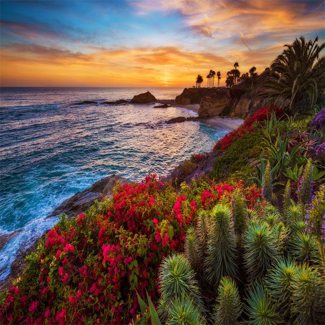 Treasure Island Laguna Beach: Wow, This Is Beautiful. Who Wants To Go Here?