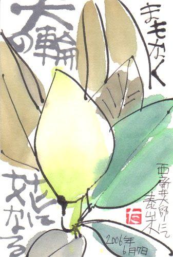 秋色波连波的相册-田口孝夫绘手纸