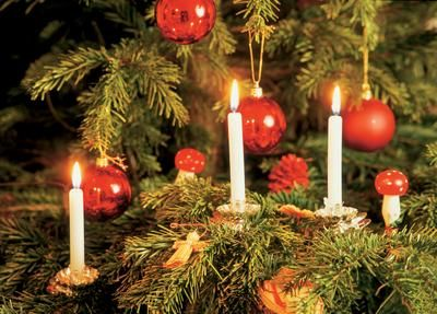 christmas trees with candles - Google Search | Christmas Trees ...