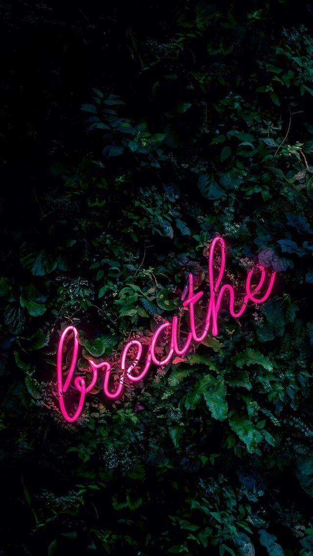 Pinterest:Faith💫   Wallpaper iphone neon