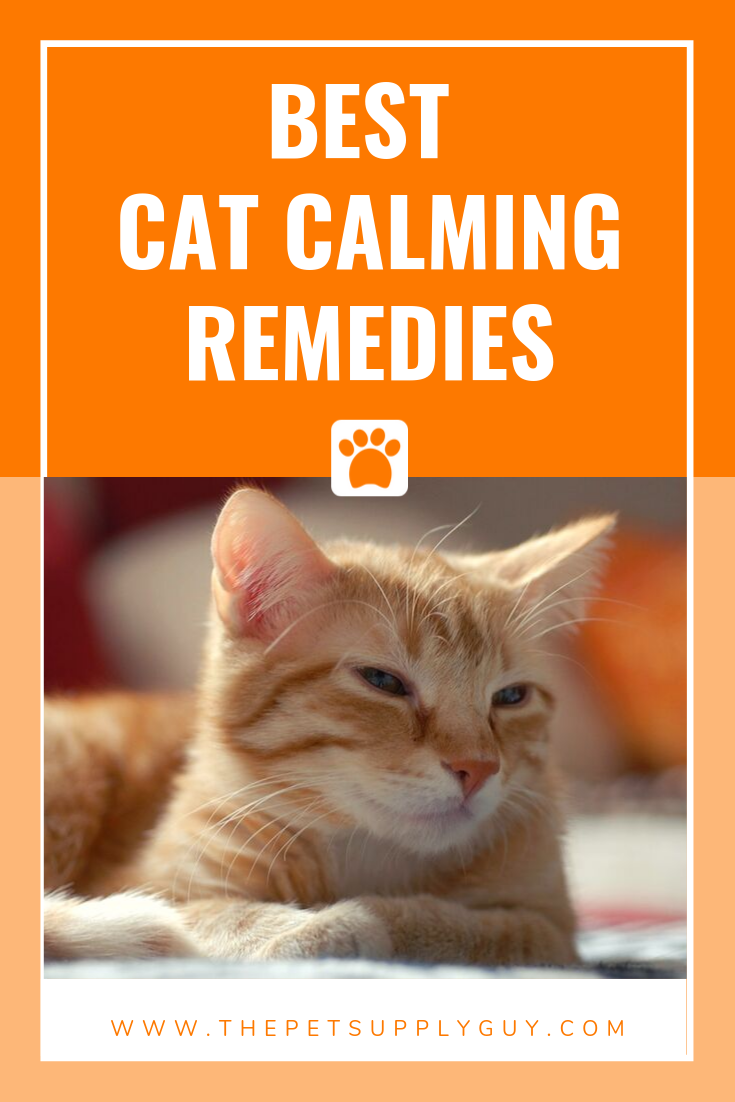 Cat Calming Products Review The Pet Supply Guy Cats Cool Cats Cat Care Tips