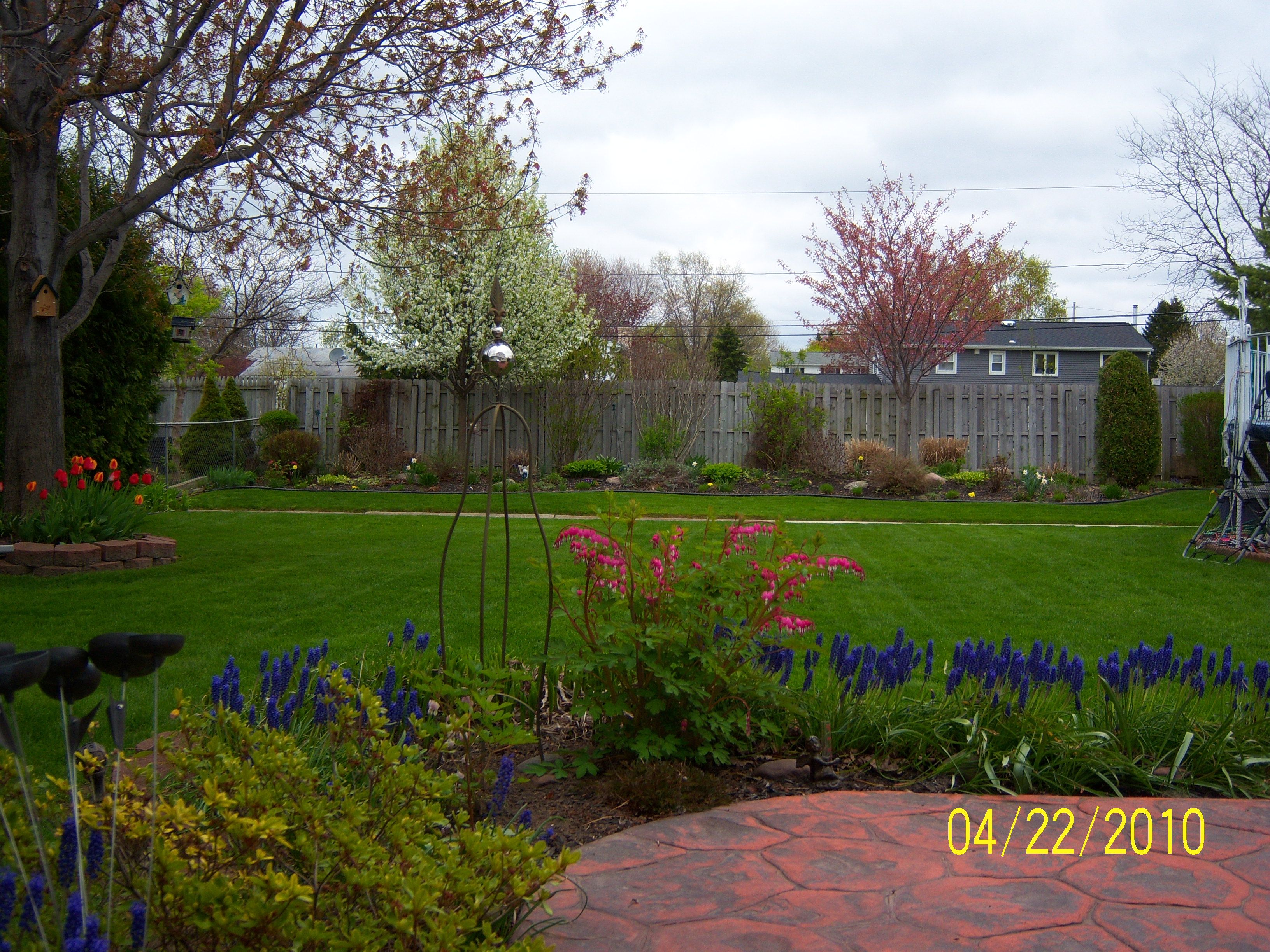 Our backyard in spring!
